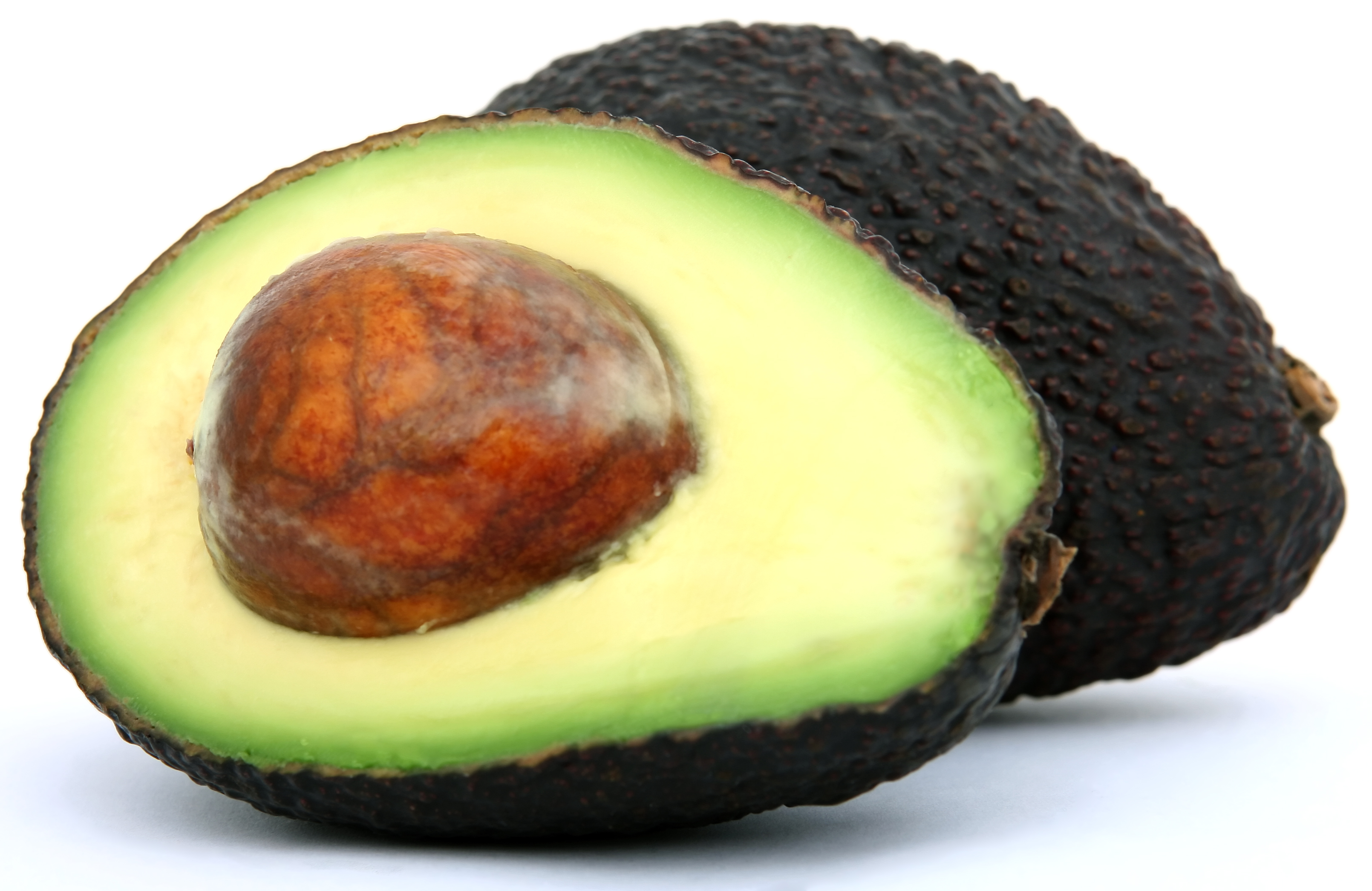 Grams Of Fat In An Avocado 20